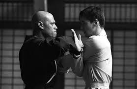 What Does It Take to Learn Kung Fu?